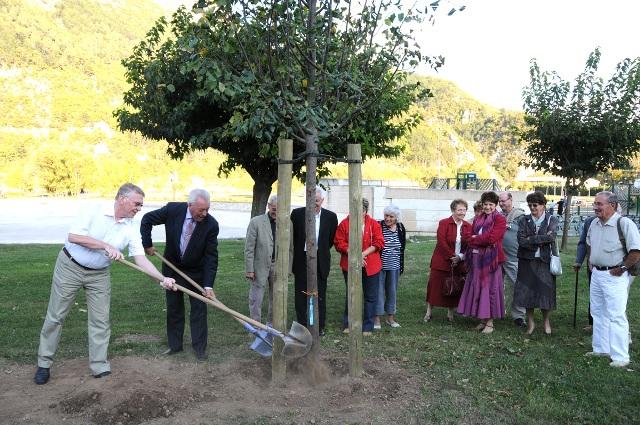plantation-arbre-herbolzheim-004.JPG