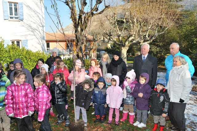 arbre-solidarite-parc-massot-deveze-4.jpg